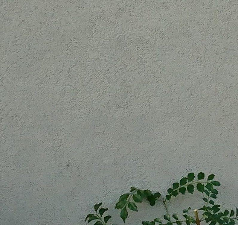 つやなし塗り壁